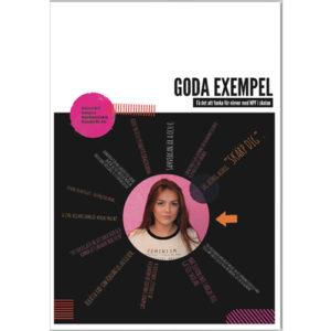 butik_goda_exempel